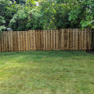 New Sod Fence