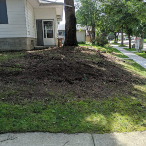 Before front yard and side